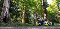 Post your best motorcycle picture!-20180602_102340.jpg
