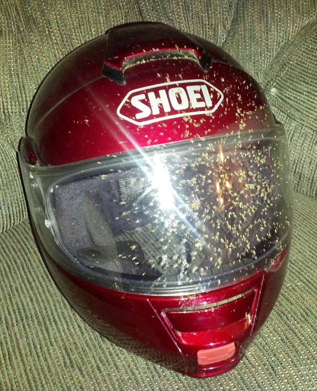 Love my Shoei helmet!